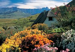 accommodation hlalanathi berg resort