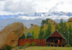 accommodation ingwe cabin