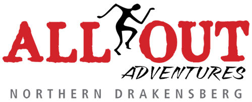 allout-2015-logo
