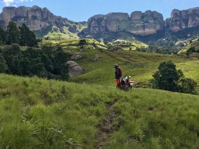 Ingwe Trail