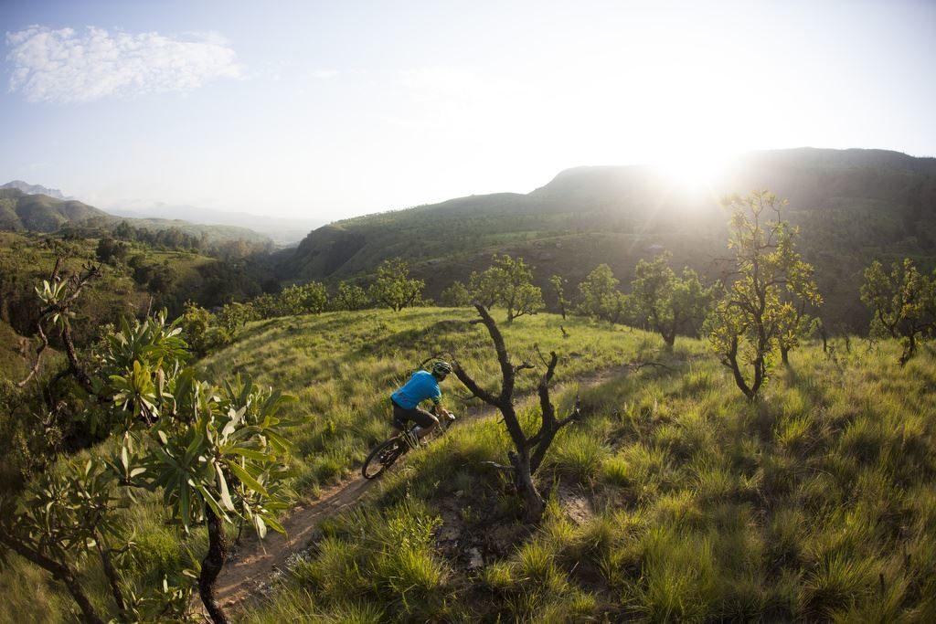 ridetheberg-blue-sunrise